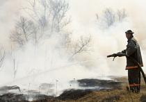 ВРостовской области стих пожар нагазопроводе